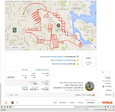 Strava art anglerfish near Oak Bay High School in Victoria BC • Strava art by Strava artist Stephen Lund • Victoria BC Garmin GPS Strava art animals fish anglerfish Lophiiformes esca illicium