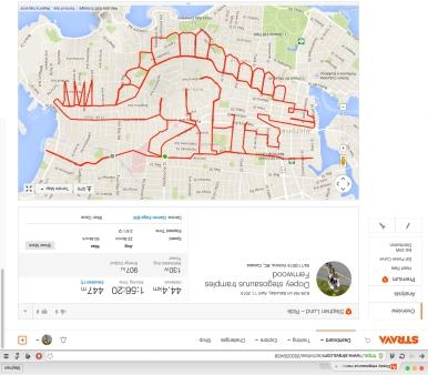 Stegosaurus tramples Fernwood neighbourhood in Victoria BC • Strava art by Strava artist Stephen Lund • Victoria BC Garmin GPS Strava art dinosaurs Stegosaurus