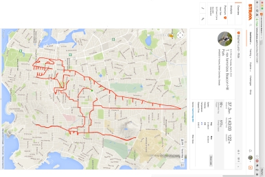 This huge Tyrannosaurus rex –  nearly seven kilometres from nose to tail – is the handiwork of Strava artist Stephen Lund • Victoria BC Garmin GPS Strava art T. rex dinosaurs Tyrannosaurau rex