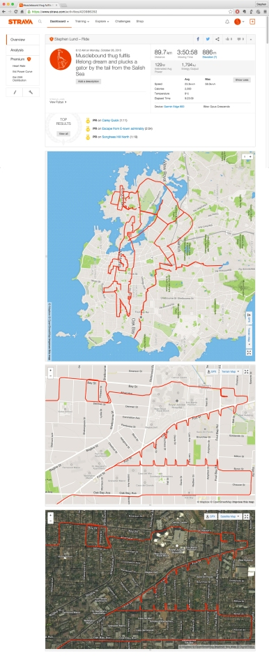 Musclebound thug plucks an alligator by the tail from the Salish Sea by GPS artist Stephen Lund in Victoria, BC, Canada GPS Garmin Strava art cyclist cycling creativity urban art street art alligator wrestling