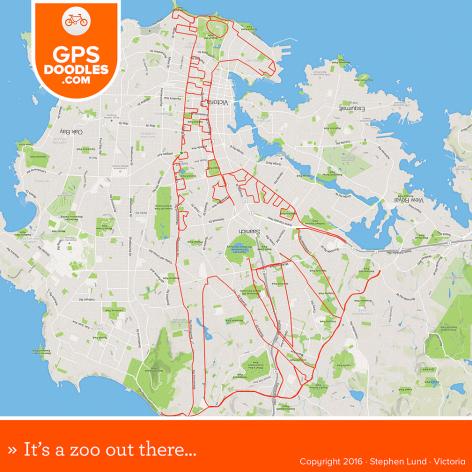 Giraffe GPS doodle by Stephen Lund Victoria BC GPS art Strava art Garmin cyclist cycling bicycle urban art street art